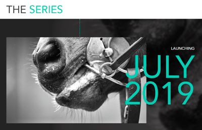 'The Series' Horse Racing Competition