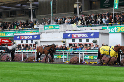 Totepool Stand at Racecourse