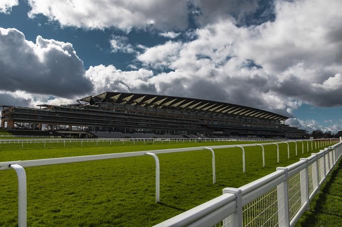 Grass track at Ascot