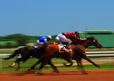 Horse racing blurry
