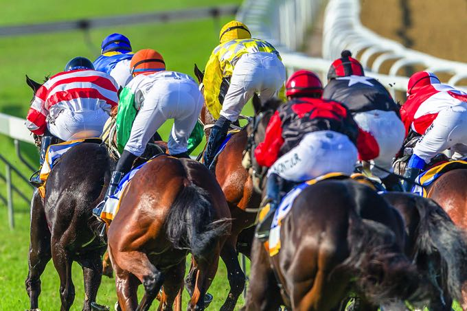 Horse racing final straight